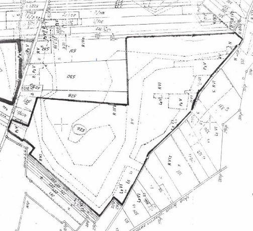Sprzedam - ziemię rolną w jednym kawałku 20.19 ha - Wola Pszczółecka