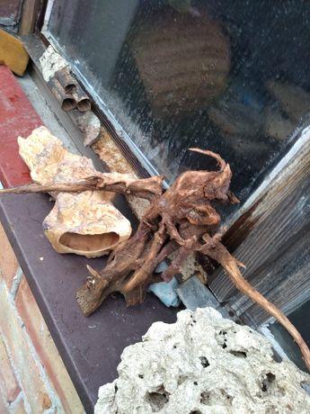 Korzeń,korzenie,drewno,ceramiczny,akwarium,terrarium.Wysylka