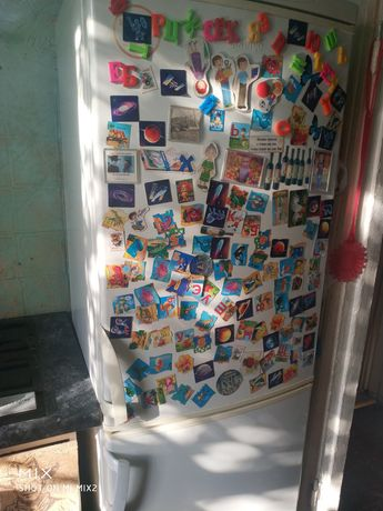 Холодильник fresh cool snaige