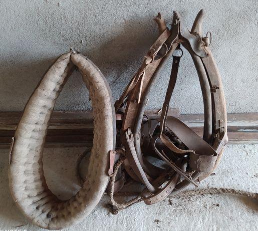 Homonto dla konia puszorek