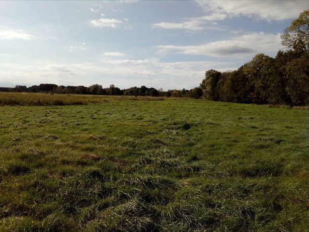 Działka rolna-łąka 4240 m2