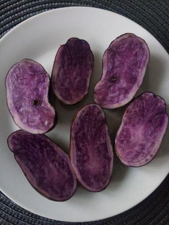 Sprzedam fioletowe ziemniaki