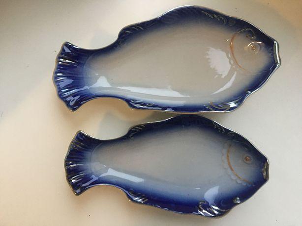 Селёдочник рыбка