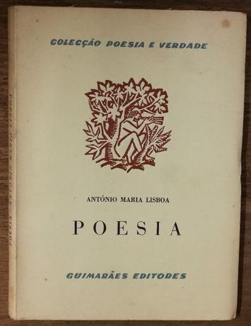 poesia, antónio maria lisboa, colecção poesia e verdade