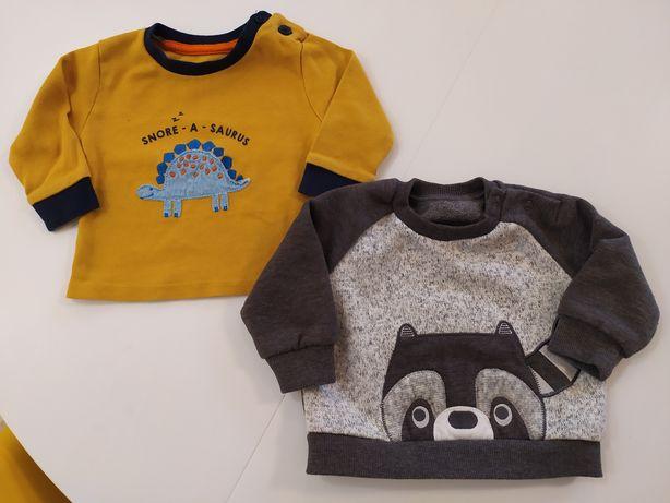 Nutmeg bluza chłopięca niemowlęca 68 szop dinozaur