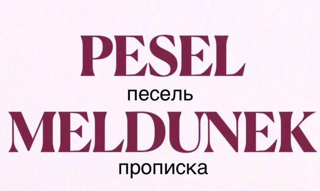 Pesel Meldunek Karta Pobytu Песель, регистрация