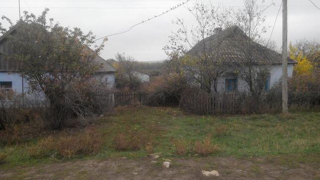 Продаю два дома на берегу реки Ингул в с.Привольное