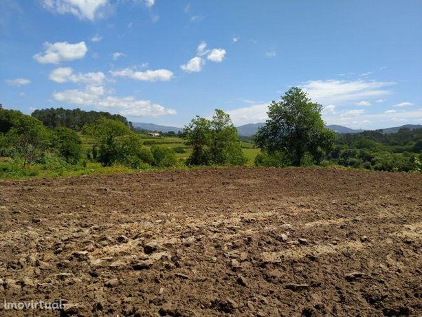 Terreno Agrícola - Barreiros
