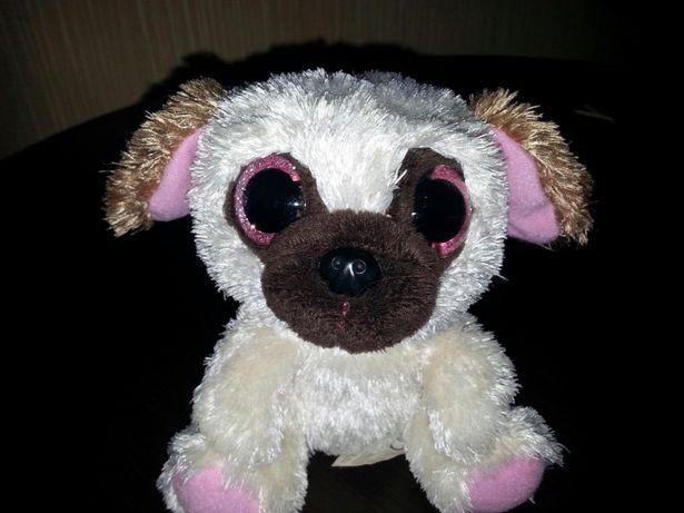 Собачка с красивыми огромными глазами глазастик