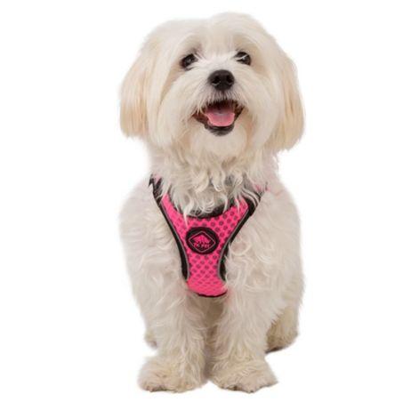 Peitoral cachorro XS e trela 150cm