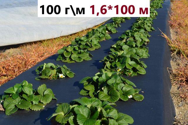 Агроволокно черное для клубники мульчирования 100 г\м 1,6*100 м