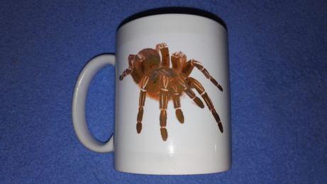 Kubek biały tarantula