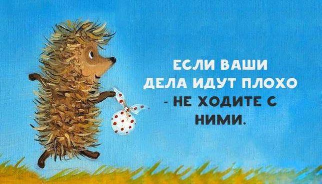 """Зоосанаторий """"Капля"""" Передержка животных"""