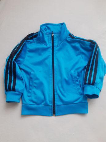Bluza niebieska adidas 98
