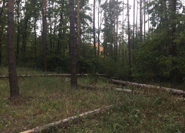 Продам участок в лесной зоне, Стоянка, Ирпень
