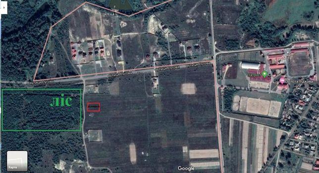 Земельна ділянка під будівництво с. Козлин (Чудове місце!)