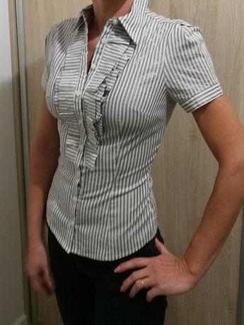 Bluzka Tally Weijl XS/34 w paski / jak nowa