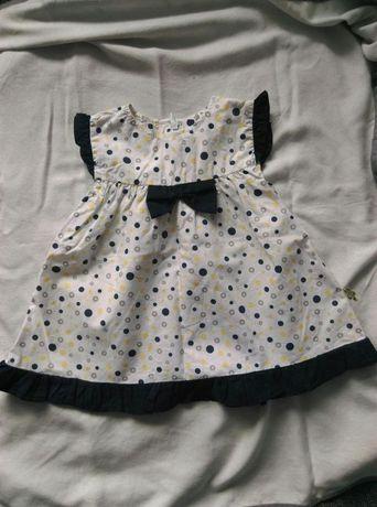 Coccodrillo, sukienka 62