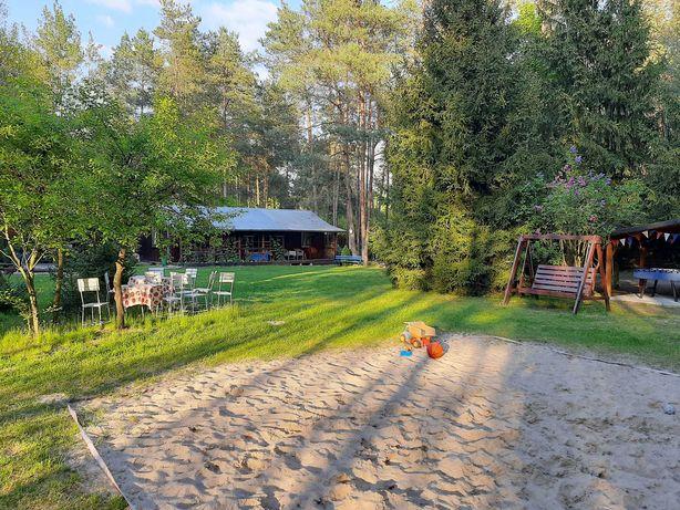 Dom na wakacje, dzialka , nad rzeka, las , 70 km od Wawy, DO WYNAJECIA