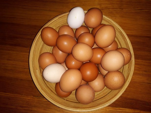 Jajka ze wsi