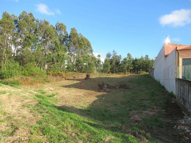 Terreno em Madalena para construção com a área de 5.600 m2