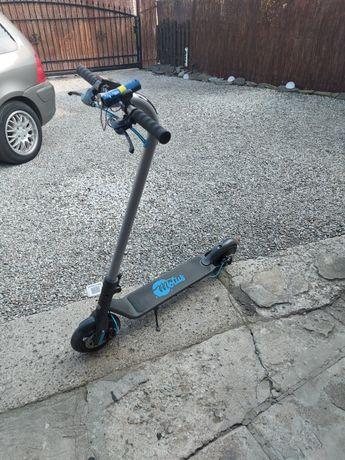Motus Scooty 8.5+ Turguoise
