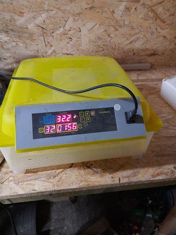 REZERWACJA do Środy Inkubator automatyczny