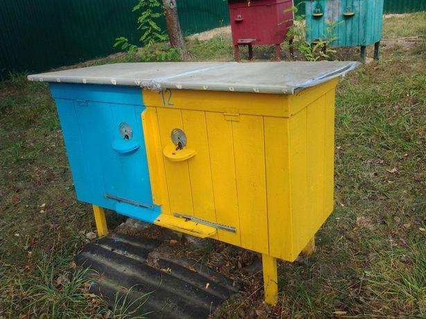 Продам бджоли рої, бджолопакети вулики.