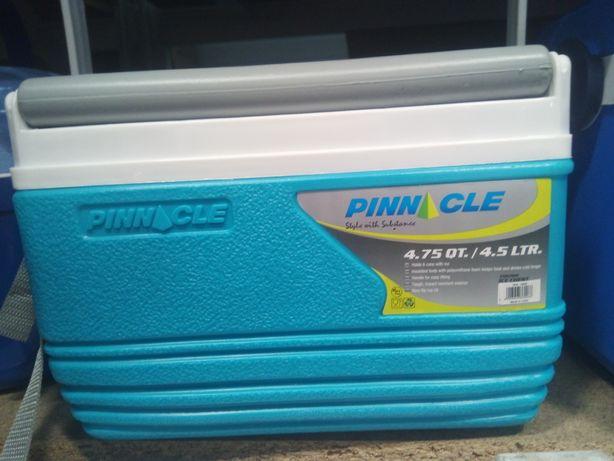 Сумка холодильник (термо сумки) контейнери холодильник.