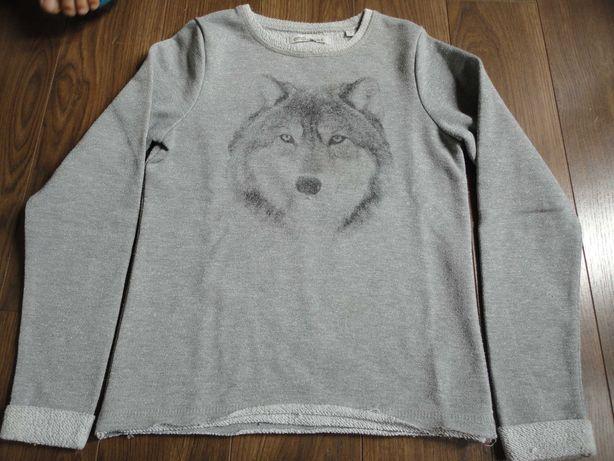 Vendo camisola malha lobo 10 anos