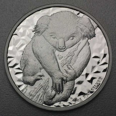 Koala 2007 Australia