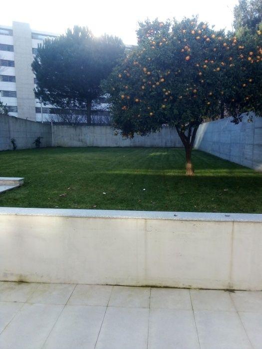 Construção e manutenção de jardins Rio Tinto - imagem 1