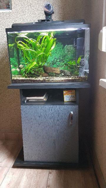 Akwarium z wyposażeniem i szafką