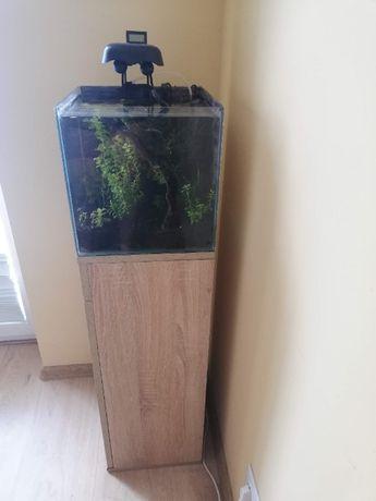 Akwarium 30x30x30, szafka, wyposażenie