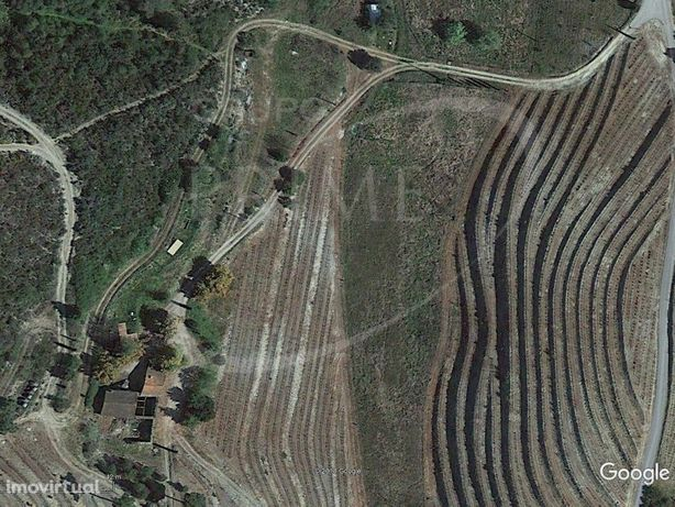 Quinta com 25,5 ha localizada no concelho de Alijó, no Do...