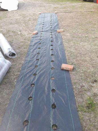 50m x 80cm Agrotkanina na chwasty OTWORAMI pod TRUSKAWKI ogórki itp