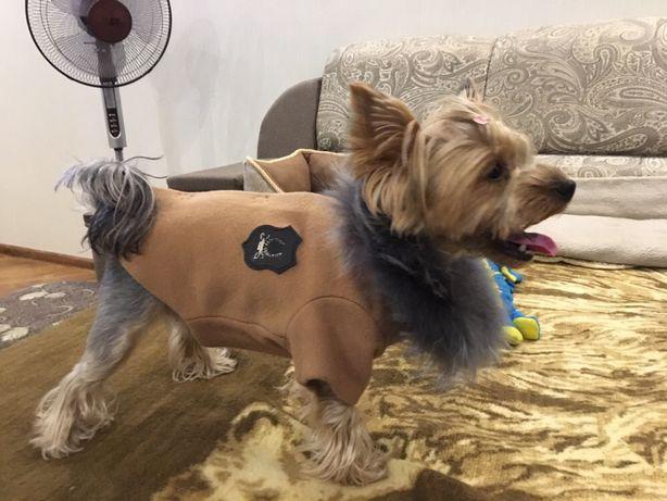 Стильное новое пальто для девочки