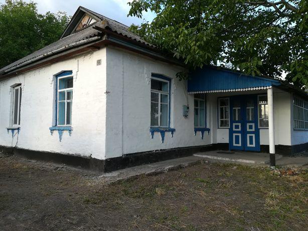 Продаю будинок Київська обл. Ставищенський р-н. село Розумниця
