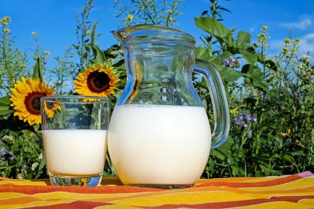 Młóto browarniane - popraw mleczność bydła - faktura VAT - dostawa