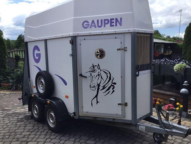 Przyczepa do koni Gaupen