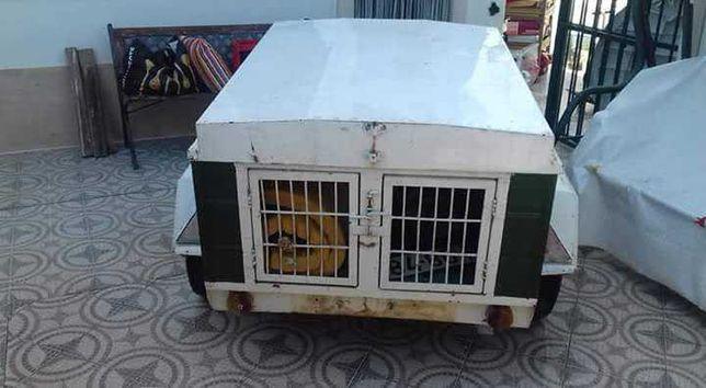 Reboque transporte de cães