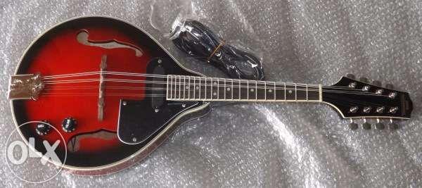 Bandolim elétrico bluegrass novo de qualidade