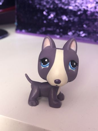 Littlest Pet Shop LPS piesek unikat