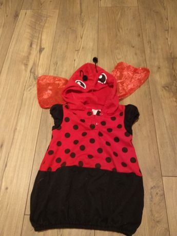 Przebranie kostium biedronka bal karnawałowy