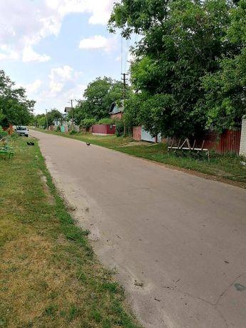 (MN) Продам дом с участком с. Брусилов
