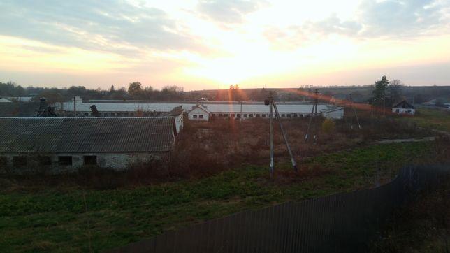 Здания общей площадью 21 000 кв.м. в 15 км от Обухова!