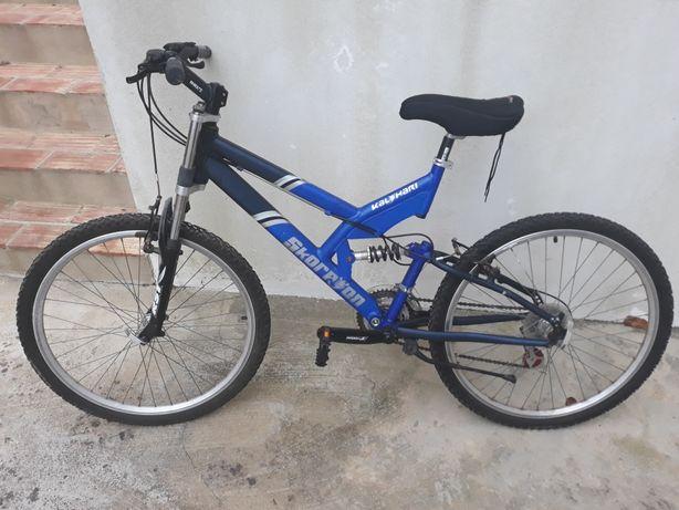Bicicleta Skorpion