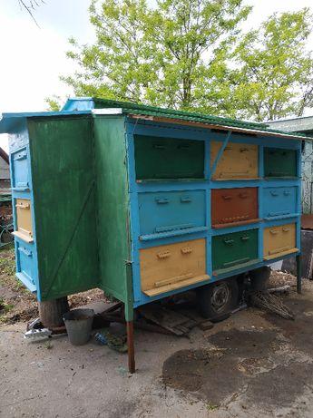 Продам павильон для пчел и ульи