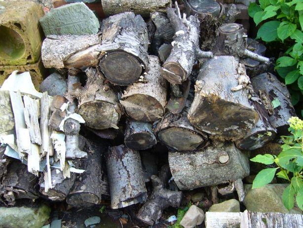 Drewno na opał lub do wędzenia świerk, czereśnia, lipa