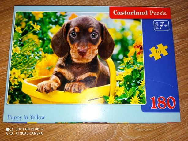 "Пазлы ""Castorland Puzzle"""